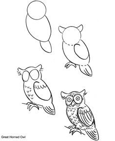 How to Draw Birds a bunny Bird Drawings, Animal Drawings, Easy Drawings, Drawing Sketches, Sketching, Drawing Lessons, Drawing Techniques, Art Lessons, Owl Art