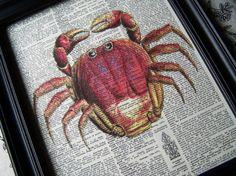 oh crabby crab