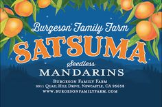 Label design and illustration for satsumas from heaven! with Dayna Burgeson and http://burgesonfamilyfarm.com/