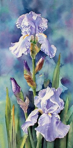 Beautiful flowers by art 3 irises watercolor art, iris art, iris Watercolor Pictures, Watercolor Flowers, Watercolor Paintings, Watercolors, Drawing Flowers, Watercolor Artists, Art Floral, Iris Art, Iris Painting