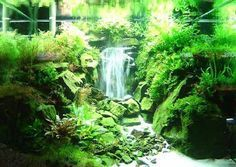 Aquatic Eden: Creating a Waterfall Illusion Underwater - Aquascaping Aquarium Blog. The trick is with bubbles and sand. Ingenious.