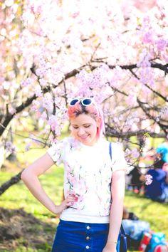 Vlog: Festa das Cerejeiras   O Mundo de Jess