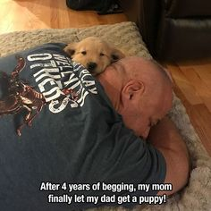 20 Photos To Remind You That Life Is Beautiful -… and r family vet hospital, and pets farm singapore hotel infinity. Cute Funny Animals, Funny Animal Pictures, Funny Cute, Cute Puppies, Cute Dogs, Cute Babies, I Love Dogs, Puppy Love, Animals And Pets