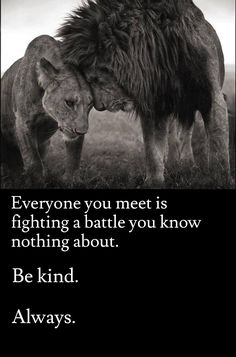 Everyone you meet is fighting a battle you know nothing about....