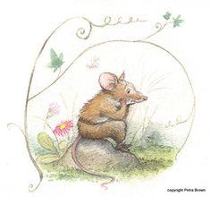 Marguerite's Fountain - Petra Brown, Children's Book Illustrator