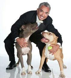 Cesar Millan con Dady & Junior.