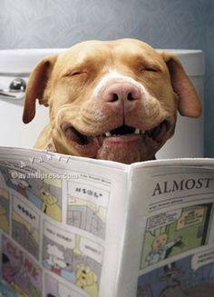 """haha, the funnies are extra funny this morning.""  