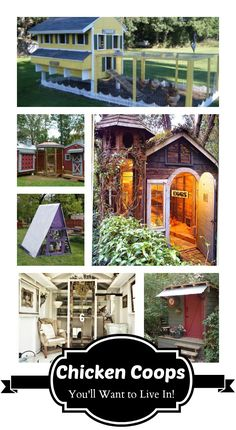 chicken coops i want to live in!   http://www.buildingachickencoop.com/?hop=likefox: