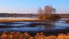 Naděje #fishpond #southbohemia #czechrepublic #trebon