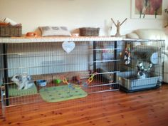 Another Awesome Rabbit Cage Storage Cubes Zip Ties Pvc