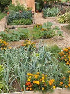 The gardening experts at DIYNetwork.com share tips on growing vegetables in beds.