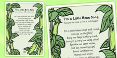I'm a Little Bean Song Lyric Sheet (With Actions) - song Fairy Tale Activities, Book Activities, Summer Activities, Eyfs Jack And The Beanstalk, Fairy Tale Theme, Fairy Tales, Kids Poems, Children Songs, Action Songs