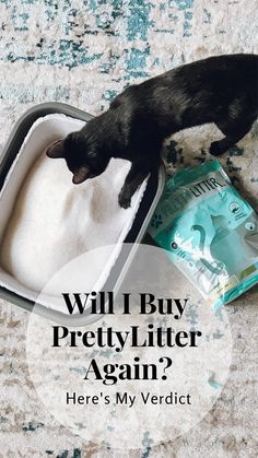 Health Monitoring Cat Litter Subscription l PrettyLitter Cute Baby Animals, Animals And Pets, Funny Animals, Farm Animals, Retro Radios, Halloween Tattoo, Crazy Cat Lady, Crazy Cats, Gato Grande