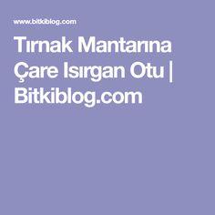 Tırnak Mantarına Çare Isırgan Otu | Bitkiblog.com