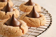 Add these classic Peanut Butter Blossoms to your next cookie tray! Make sure you try these Peanut Butter Blossoms warm while the chocolate is still soft.