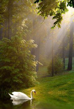 12 Photos of Beautiful Nature.