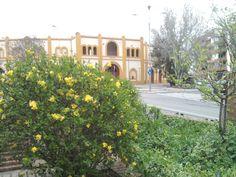 Plaza de toros de Huesca; 1929