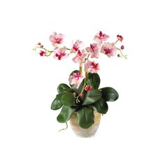 Nearly Natural Triple Mini Phalenopsis Silk Orchid Arrangement Pink White * Click image for more details.