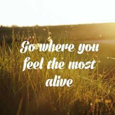 Go where you feel the most alive. True Quotes, Great Quotes, Words Quotes, Sayings, Love Words, Beautiful Words, Favorite Quotes, Favorite Things, Life Changing Quotes