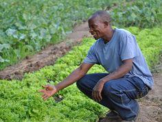 Afrika'da neden mi küçük çifçileri destekliyoruz? Çünkü dünyadaki gıdanın %70'ini üretmelerine rağmen günlük ortalama gelirleri 1 doların altında. Çünkü onları güçlendirmeden dünyada açlığı ve yoksulluğu azaltamayız. #geleceğidönüştür #ideauniversal http://ift.tt/ZWHEEq