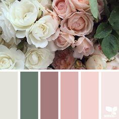 Nature-Inspired Color Palettes AKA Design Seeds For Designers,... ❤ liked on Polyvore featuring backgrounds and design seed