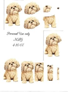 Photo by Christine Ingram 3d Pictures, Animal Pictures, Card Patterns, Embroidery Patterns, Decoupage Printables, 3d Sheets, Collage, 3d Cards, Decoupage Paper