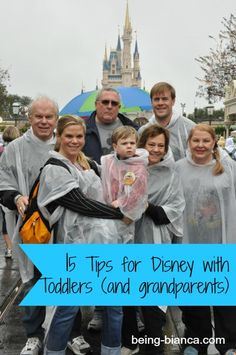 15 Tips and Tricks for Taking Toddlers and Grands to Disney! Note the ponchos in the picture! :)