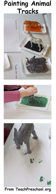 This is rather unscientific, but it looks like a really fun way to give children a chance to make their own animal tracks!  Check out the blog post that I took it from:  http://www.teachpreschool.org/2011/12/preschool-activity-animal-tracks-are-not-alike/?utm_source=feedburner_medium=email_campaign=Feed%3A+TeachPreschool+%28Teach+Preschool%29