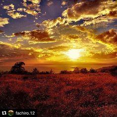 #Repost @fachiro.12  #naturelovers #nature #landscape_lovers #landscape #italia_landscape #view #liveauthentic #volgoitalia #igersitalia #ig_global_life #ig_captures #ig_masterpiece #igers #pointofview #pic #photography #umbria #sunset #tramonto #clouds #silence #total_italy #loves_umbria #paesaggio #trasimeno #trasimenolake #scenery #amazing