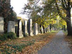 Zentralfriedhof Wien Alter Jüdischer Friedhof