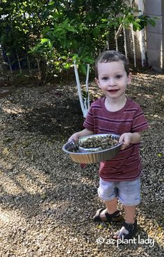 Children are naturally curious and they like to discover new things in the garden - especially rocks. Kids have a love affair with rocks.