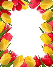 "Photo from album ""Тюльпаны"" on Yandex. Flower Background Wallpaper, Flower Phone Wallpaper, Flower Backgrounds, Text Background, Paper Background, Happy Birthday Frame, Birthday Frames, Borders And Frames, Borders For Paper"