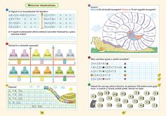 School Frame, Math Worksheets, Periodic Table, Words, Math Resources, Periodic Table Chart, Horse