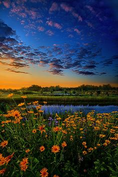 """""""The Day Is Coming"""" Horizons by Phil Koch. Lives in Milwaukee, Wisconsin, USA. http://phil-koch.artistwebsites.com https://www.facebook.com/MyHorizons"""