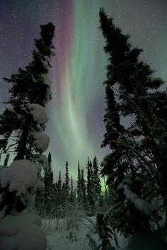 Aurora, Hay River, Northwest Territories