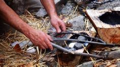 """8 Wilderness Survival """"Rules"""" That Are Actually Myths"""