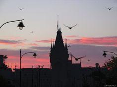 52 X Palatul Culturii din Iasi - Romania Vaporwave, Romania, Statue Of Liberty, Travel, Pictures, Liberty Statue, Voyage, Viajes, Traveling