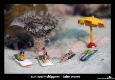 Underwater-Photos-of-Toy-Miniatures-Interacting-with-Marine-Life-3