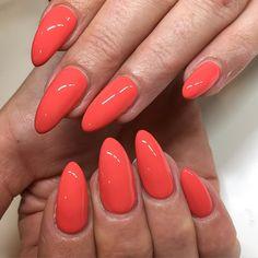 #whattawatermelon by Pronails #pn #pronails #pronails_hq #instanail #nailstagram #nailsbyshari #nailsdonebyme #nails2inspire #nails #notd #nailsofig #nailsaddict