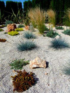 Mediterrane Gartenlandschaft-Ziergras anbauen Steingarten