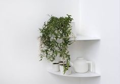 TEEGOLO is a metal wall corner shelf that is as functional and as it is beautiful. Minimalist and simple, it will fit in every interior ! Kitchen Wall Shelves, Shower Shelves, Small Shelves, Corner Shelves, Room Corner, Kitchen Corner, Steel Sheet, Bathroom Closet, Closet Bedroom