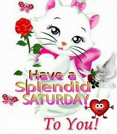Have a splendid Saturday weekend saturday happy saturday saturday quote saturday…