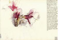 DIARY CAMINO SANTIAGO Illustration by Simon Prades.