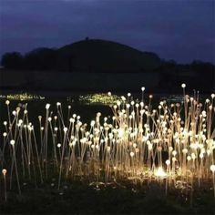 Magic lights.