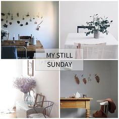 #MyStillSundayCompetition Feature . . . Please join me in celebrating this week's Still Sunday //// Feature Artists. . oh my ALL. .so lovely. .  @veronikagphotography  @erikaappelstrom  @cavermiglia  @wunderblumen . Thank you ALL ..(always).. for sharing in the Still Sunday feed. . To play along (any day of the week)...simply tag your still moments with #mystillsundaycompetition and me (@kimklassen) xo . . . ( #pin )