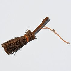 Twig Broom * Find out more details @ http://www.amazon.com/gp/product/B008WAELWS/?tag=gardening034-20&pjk=040816004131