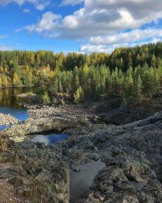 Dormant volcano of Girvas, Karelia. True beauty of North, proud and dreamy. #travelrussia #karelia #girvas #гирвас #volcano #休火山 #darkmood #darkforest #northernnature #visualsoflife #outdoortones #greatnorthcollective #moodynaturelandscapes #visualpoetry #visualcrush #instapoetry #poetryofinstagram #calledtobecreative #madetocreate #mixedmedia #moodygram #moodygrams #inkandverses #darkmoody #путешествие #творчествобезграниц #森林浴 #森林 #autumncolors #travelnorth Great North, Dark Forest, Volcano, True Beauty, Exploring, River, Landscape, Create, Nature