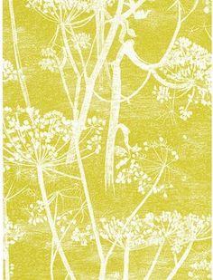 Cole & Son Cowparsley Wallpaper, Citrus, 66/7051