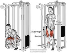 Cable squat. A compound push exercise. Main muscles worked: Gluteus Maximus, Quadriceps, Adductor Magnus, Soleus, Hamstrings, and Gastrocnemius (last two not highlighted).