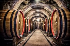Tuscan wine barrels